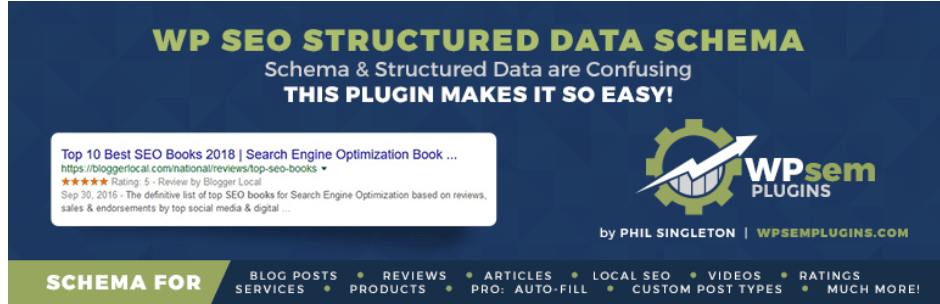 WP SEO Structured Data LogoSchema